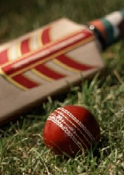 cricket game terms at gamerisms